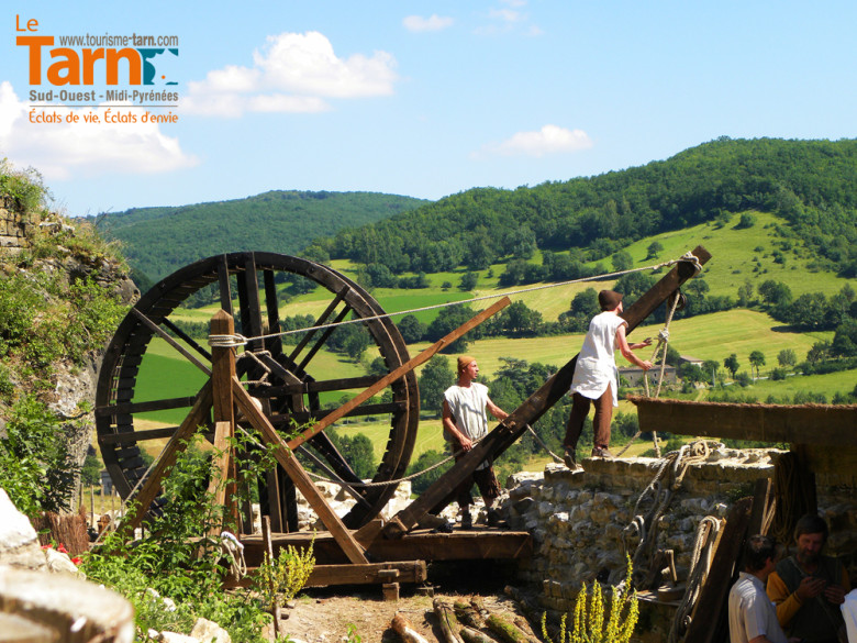 Le grand Fauconnier de Cordes-sur-Ciel Camping Tarn