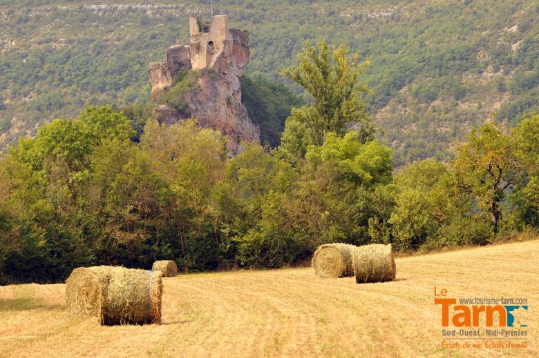 Penne d Albigeois forteresse de Penne Camping Tarn